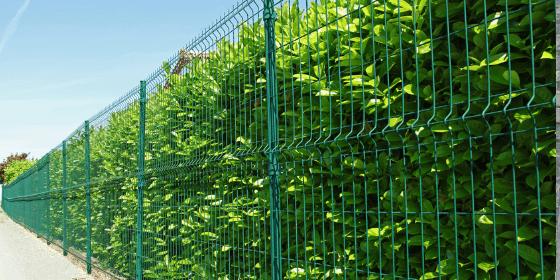 Ogrodzenie działki – ile kosztuje?
